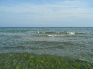 Trolska dolska vatten