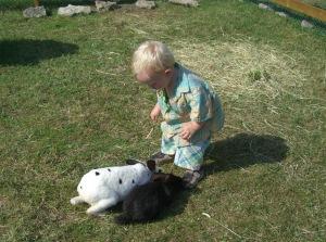Kaninklappning